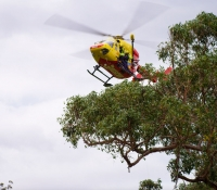 Helicopter Winching Over the Bush