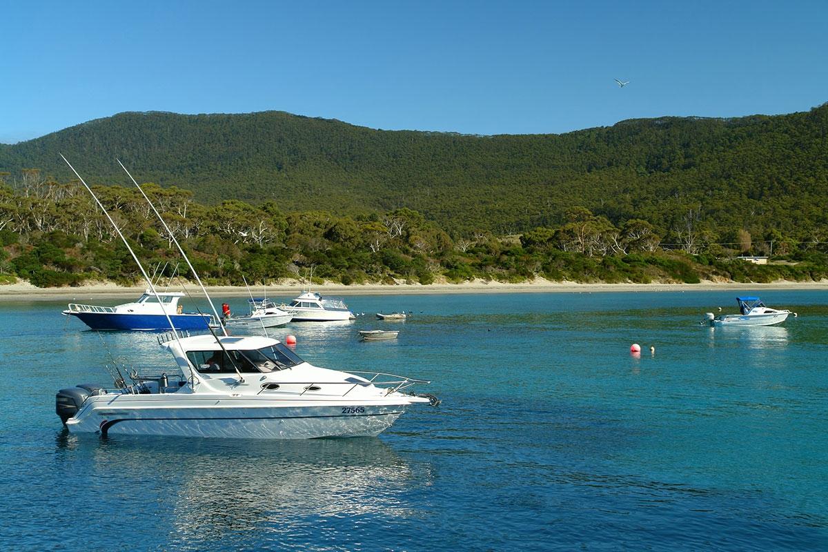 Boats Tasmanian Coast